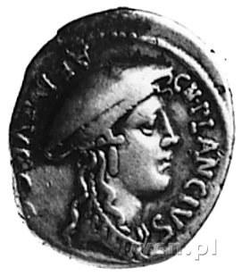 Cn. Plancius (55 p.n.e.), denar, Aw: Głowa Diany Planci...