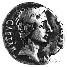 denar, Aw: Głowa Augusta w prawo i napis: CAESAR..., Rw...
