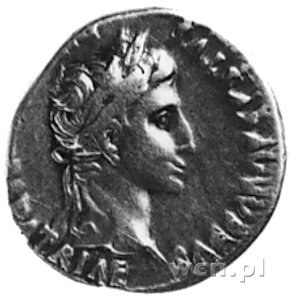denar, Aw: Popiersie Augusta w wieńcu na głowie i napis...