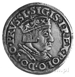 trojak 1536, Gdańsk, Aw: Popiersie i napis, Rw: Napis i...