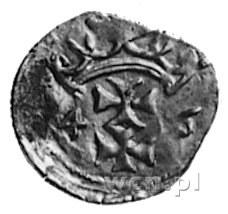 denar 1546, Gdańsk, Aw: Orzeł Prus Królewskich, Rw: Her...