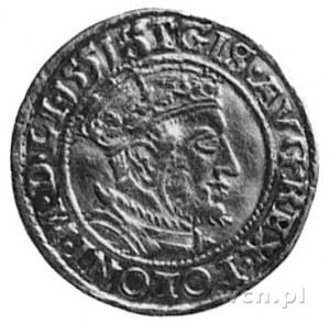 dukat 1551, Gdańsk, Aw: Popiersie i napis, Rw: Herb Gda...