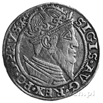 trojak 1557, Gdańsk, Aw: Popiersie i napis, Rw: Herb Gd...
