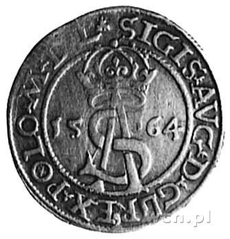 trojak 1564, Wilno, j.w., Gum.622, Kurp.839 R