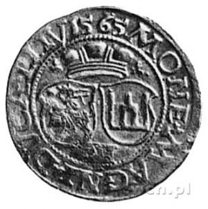 dwugrosz 1565, Wilno, Aw: Popiersie i napis, Rw: Dwie t...