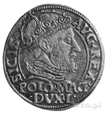 grosz na stopę polską 1548, Wilno, j.w., Gum.610, Kurp....
