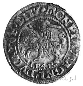 półgrosz 1545, Wilno, Aw: Orzeł i napis, Rw: Pogoń i na...