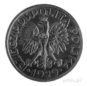1 złoty 1929- Wieniec z liści i owoców, na rewersie wyp...