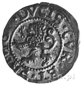 szeląg 1575, Mitawa, Aw: Tarcza herbowa Kettlerów z mon...