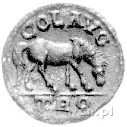 AE- 21, Troas (Aleksandria Troas), Aw: Popiersie cesarz...