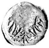 Księstwo Cieszyńskie, halerz jednostronny 1452- 1528; O...