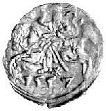 denar 1557, Wilno, Kurp. 644 R3, Gum. 592, T. 10