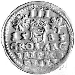 trojak 1585, Wilno, Kurp. 313 R1, Gum. 763, herb Lis po...
