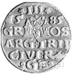 trojak 1585, Ryga, Kurp. 448 R, Gum. 814, patyna