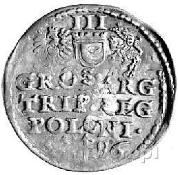 trojak 1586, Poznań, Kurp. 205 R, Gum. 718, końcówka da...