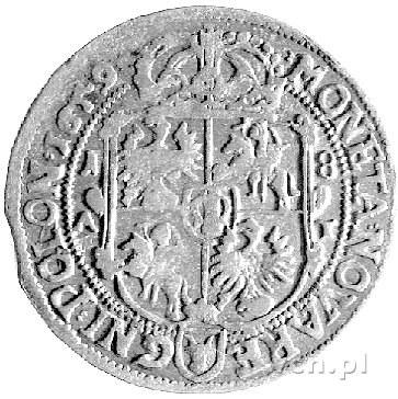 ort 1659, Poznań, Kurp. 446, Gum. 1758