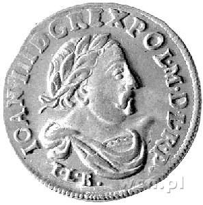 szóstak 1683, Bydgoszcz, herb Leliwa, drugi egzemplarz,...