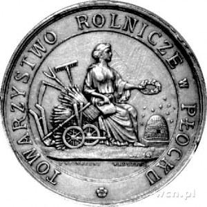 medal Towarzystwa Rolniczego w Płocku sygn. S.W., Aw: H...