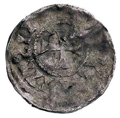 denar 1.000-1010 r., Aw: Głowa z długimi włosami i napi...