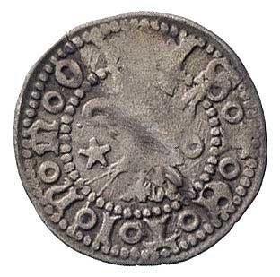 Szczecin, kwartnik XIV-XV wiek, Aw: Głowa gryfa w koron...