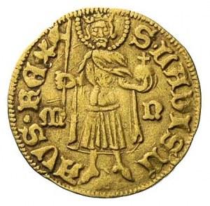 Zygmunt 1387-1437, goldgulden- Nagy-Banya, Aw: Tarcza h...