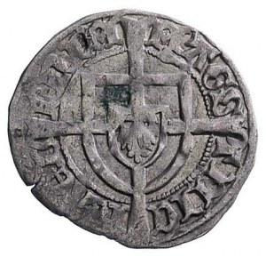 Michał Küchmeister von Sternberg 1414-1422, szeląg, Aw:...