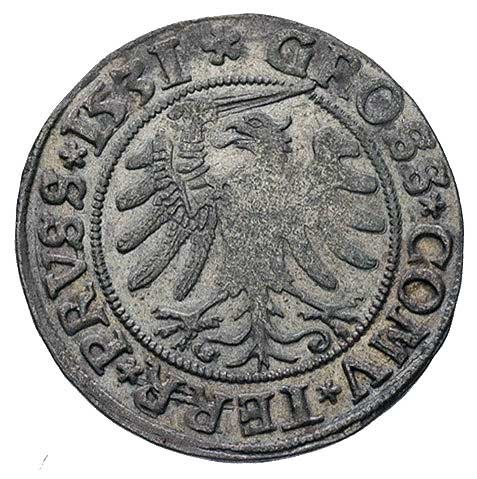 grosz 1531 Toruń, odmiana napisu PRVS / PRVSS