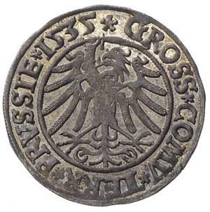 grosz 1535 Toruń, ładna, centrycznie wybita moneta
