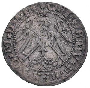 grosz 1536, Wilno, odmiana z literą M pod Pogonią, podo...