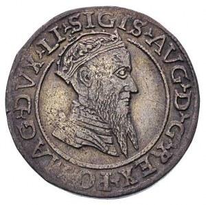 czworak 1568, Wilno, rzadsza odmiana z interpunkcją w p...