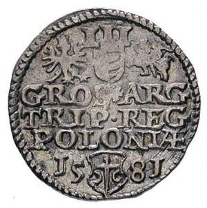 trojak 1581, Olkusz, T. 3, rzadki