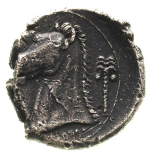 ZEUGITANIA, Kartagina, tetradrachma, Aw: Głowa kobiety ...