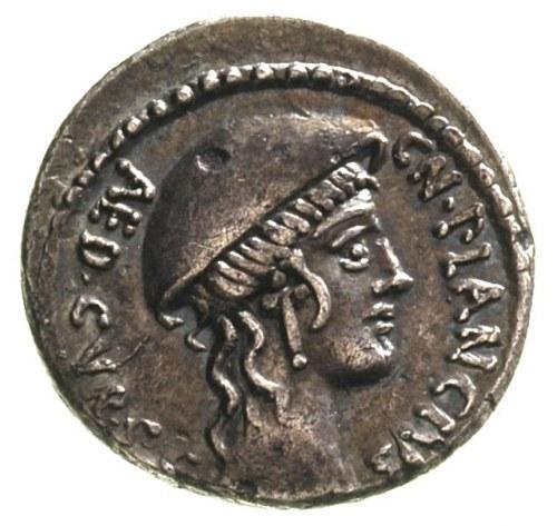 Cn. Plancius 55 pne, denar, Aw: Głowa Macedonii w prawo...