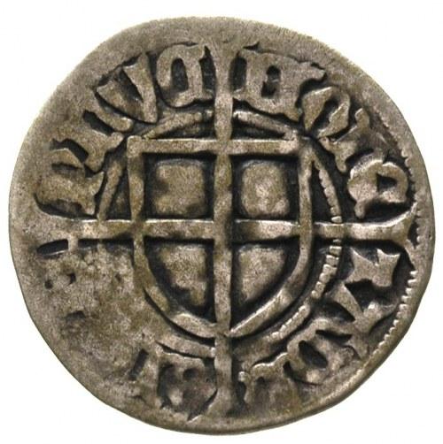 Paweł von Russdorf 1422-1441, szeląg, Aw: Tarcza wielki...