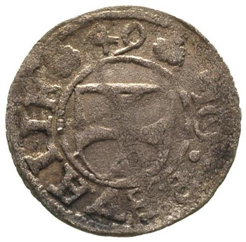 Johann von der Recke 1549-1551, szeląg 1549, Rewal, Aw:...