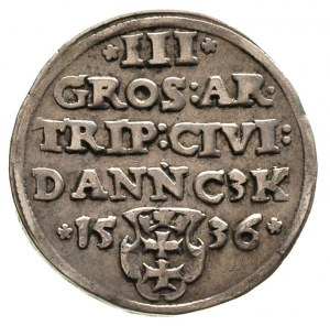 trojak 1536, Gdańsk, T. 2