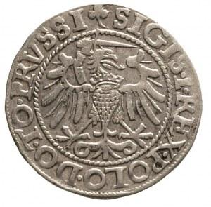 grosz 1540, Elbląg
