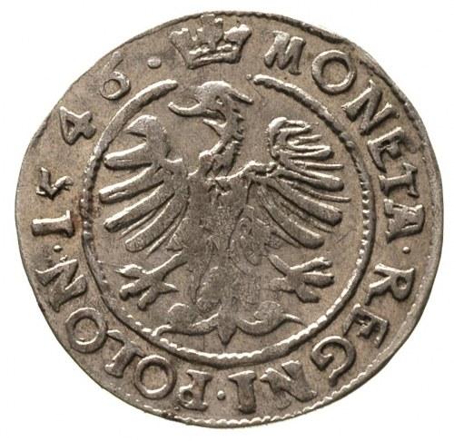grosz 1546, Kraków, piękny