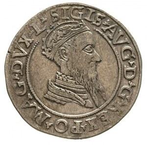 czworak 1569, Wilno, Ivanauskas 675:96, ładnie zachowan...