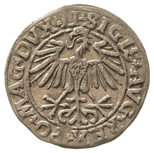 półgrosz 1550, Wilno, Ivanauskas 478:72