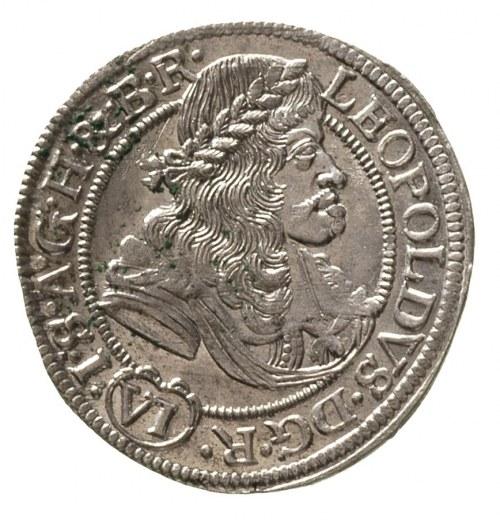 6 krajcarów 1677, Wrocław, F.u.S. 503, wyśmienicie zach...