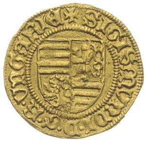 Zygmunt I 1387-1437, goldgulden 1428-1429, Krzemnica, A...
