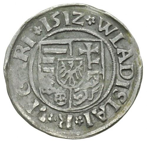 Władysław II Jagiellończyk 1490-1516, denar 1512, Krzem...