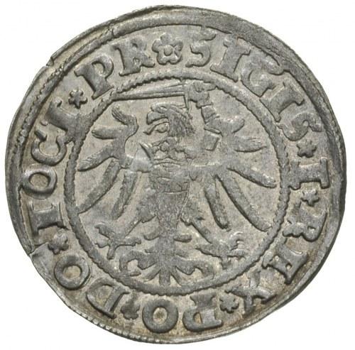 grosz 1534, Elbląg, na awersie końcówka napisu PR
