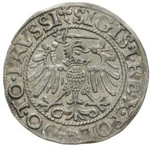 grosz 1540, Elbląg, ładny