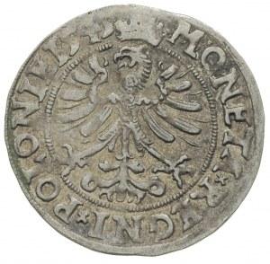 grosz 1545, Kraków, korona wąska i wysoka, bardzo ładny...