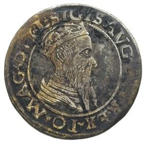 czworak 1566, Wilno, odmiana napisu L / LITV, Ivanauska...