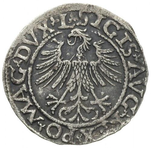 półgrosz 1562, Wilno, herb Topór na rewersie u dołu, Iv...