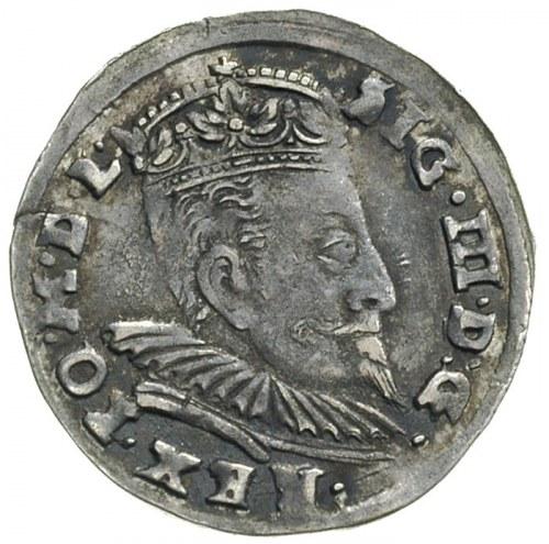 trojak 1596, Wilno, herb Chalecki pomiędzy gałązkami, I...