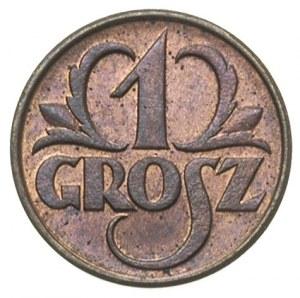 1 grosz 1932, Warszawa, Parchimowicz 101 g, bardzo ładn...